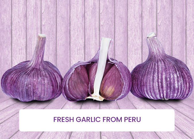 Fresh-Garlic-from-Peru-fields
