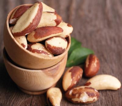 brazil-chesnut-nuts-harvest-crop-export-global-market